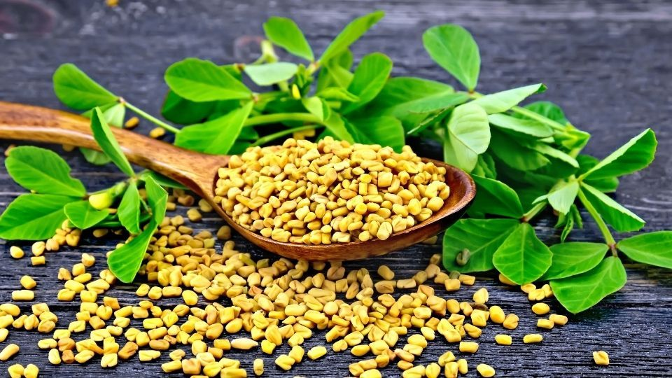 درمان دیابت نوع دوم به وسیله گیاهان دارویی