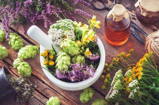 دارو های گیاهی کاهش وزن