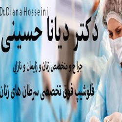 مشاهده صفحه دکتر دیانا حسینی