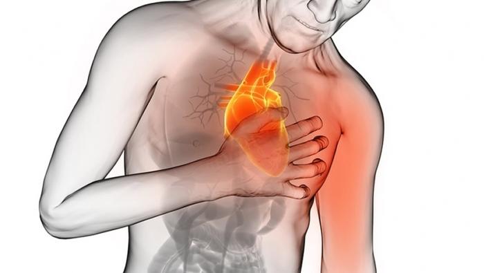 دلیل افزایش ضخامت ماهیچه قلب
